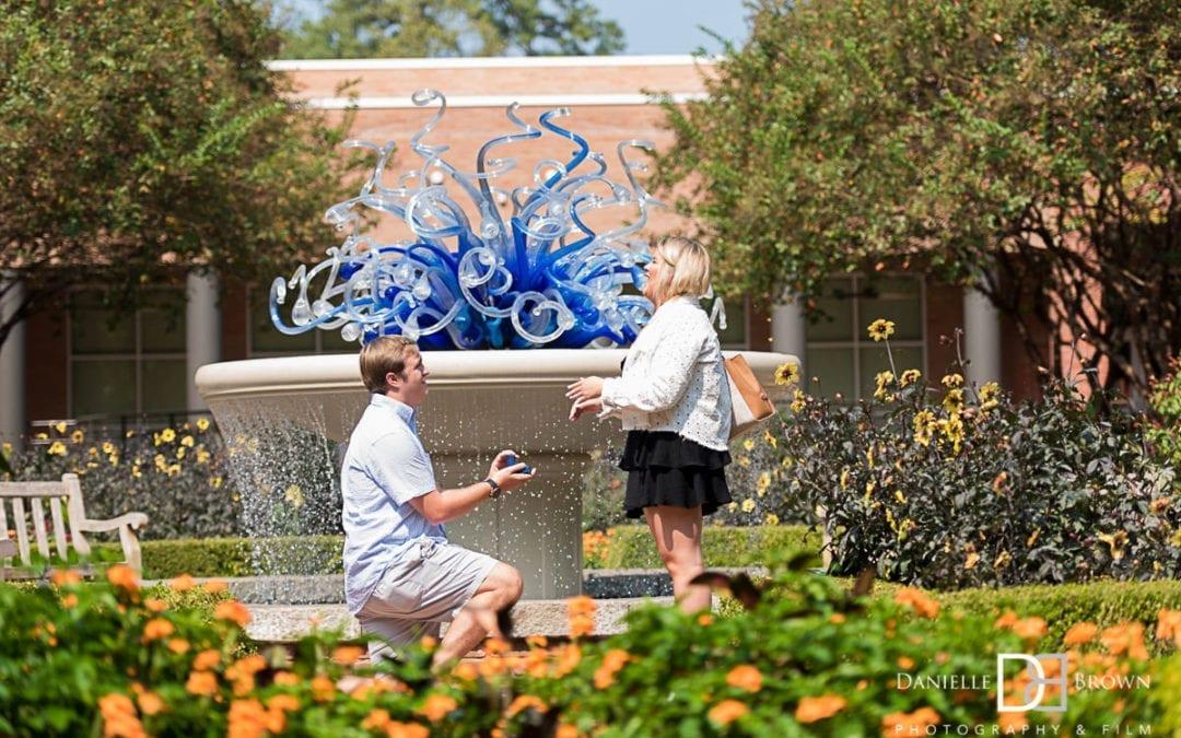 Atlanta Botanical Garden Surprise Proposal